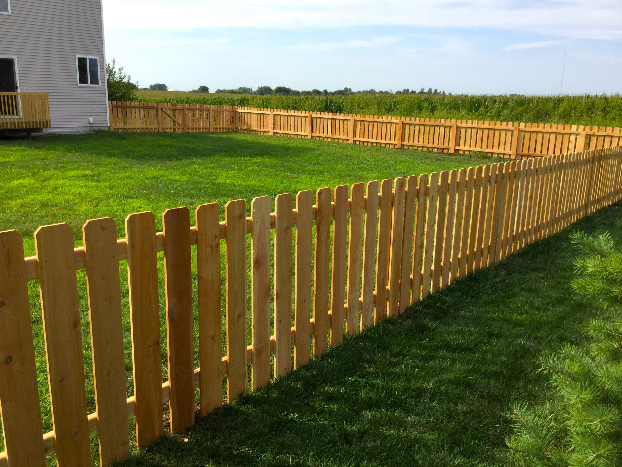 4 ft Cedar Spaced Picket