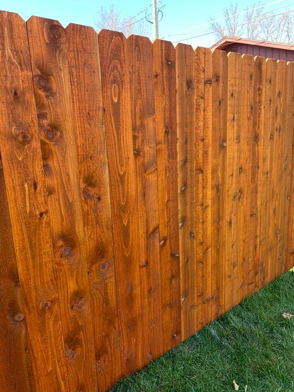 Cedar Tone_Outside of fence