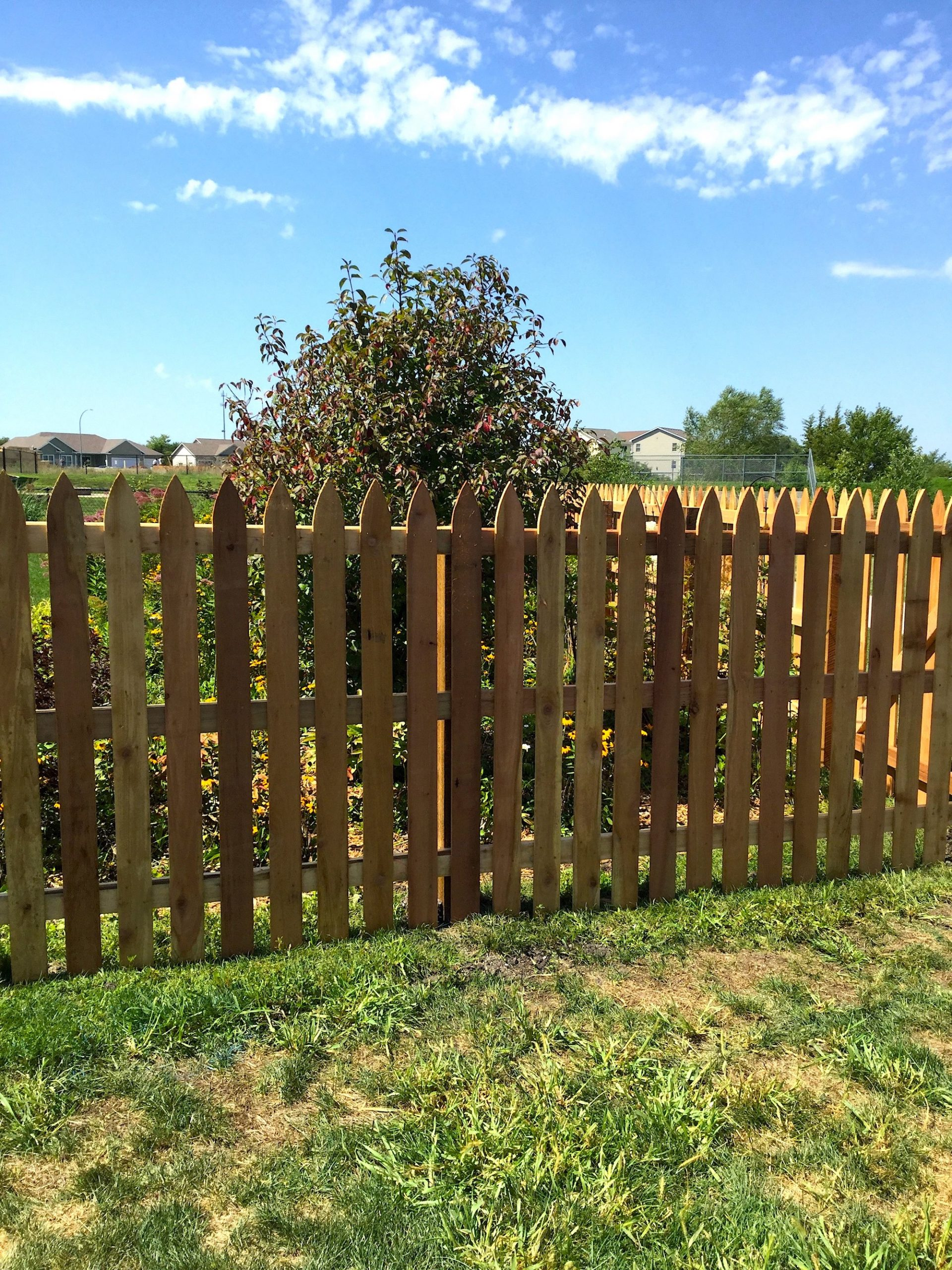 Wood Gothic picket Fence